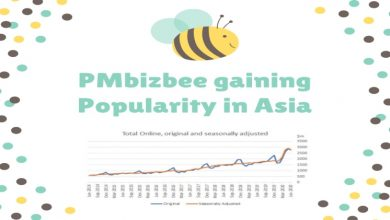Photo of PMbizbee Gaining Popularity in Asia