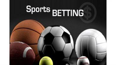 Photo of Best Online Sports website in Korea