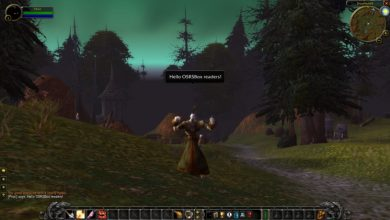 Photo of Are Wotlk Private Servers still the most prefered expansion?