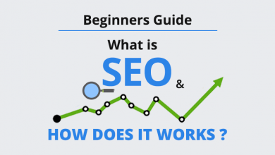 Photo of SEO Guide From Beginner To Expert