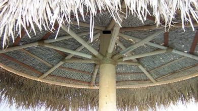 Photo of Tiki Shack Importer Umbrellas Review