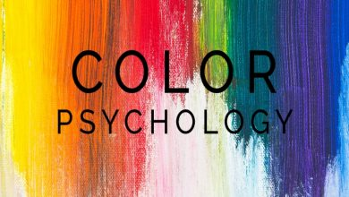 Photo of The Psychology Of Colors While Working With Banner Stand