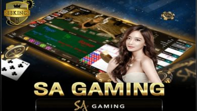 Photo of What Is Sagaming?