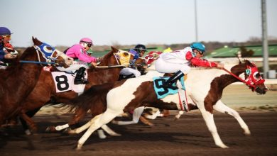 Photo of 4 Essential Requirements To Become A Jockey.