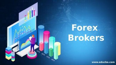 Photo of Choose The Best Forex Broker For Your Trading Currency—But How To Choose?